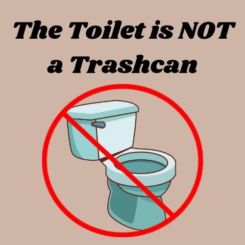 Toilet is not a trashcan link