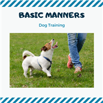 Basic Manners Dog Training Image