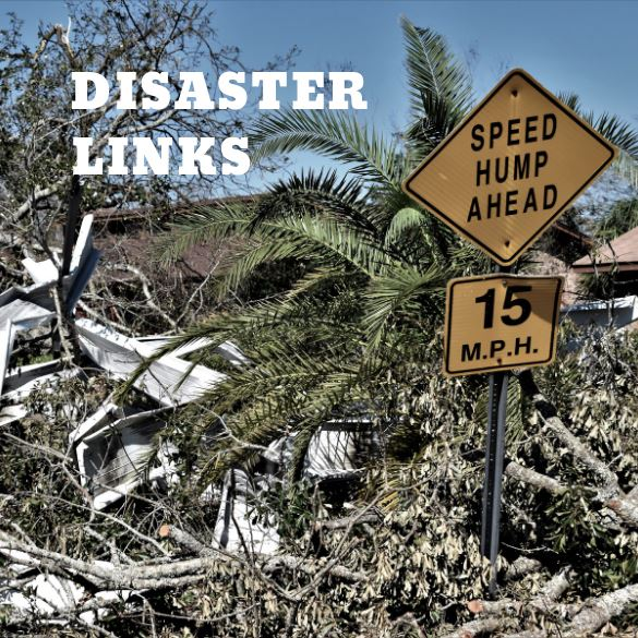 Disaster Links Image