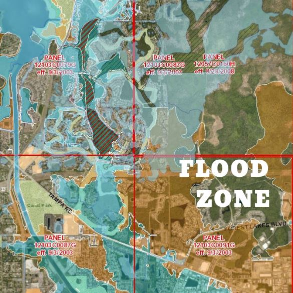 Flood Zone Image